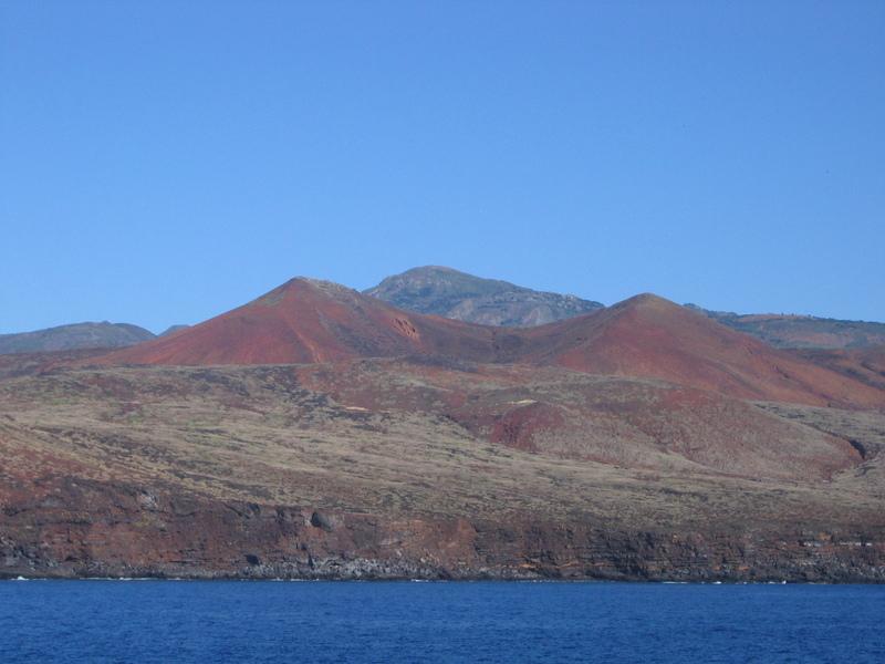 Île de Socorro au Mexique