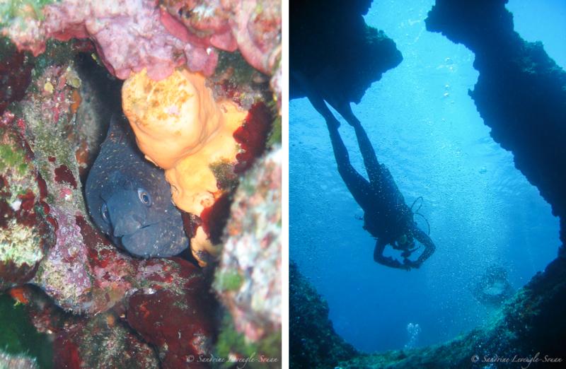 Plongée sous-marine en Croatie