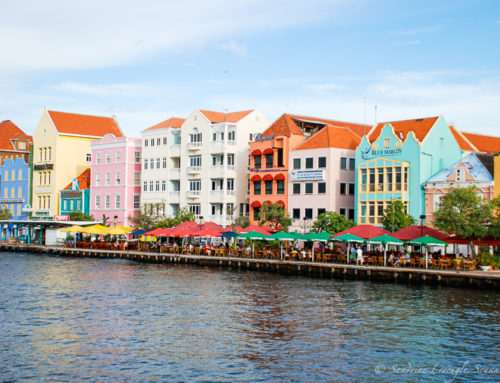 Prochaine destination : Curaçao en novembre !