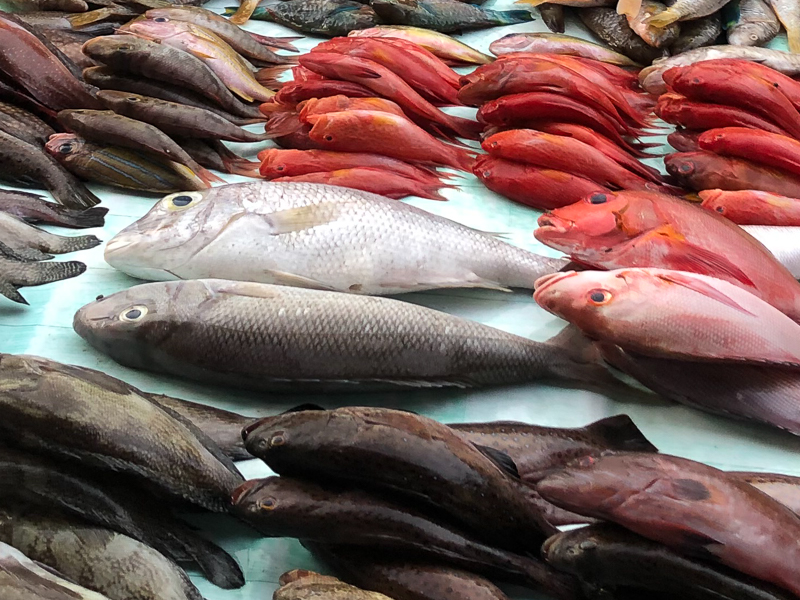marché poissons Asie