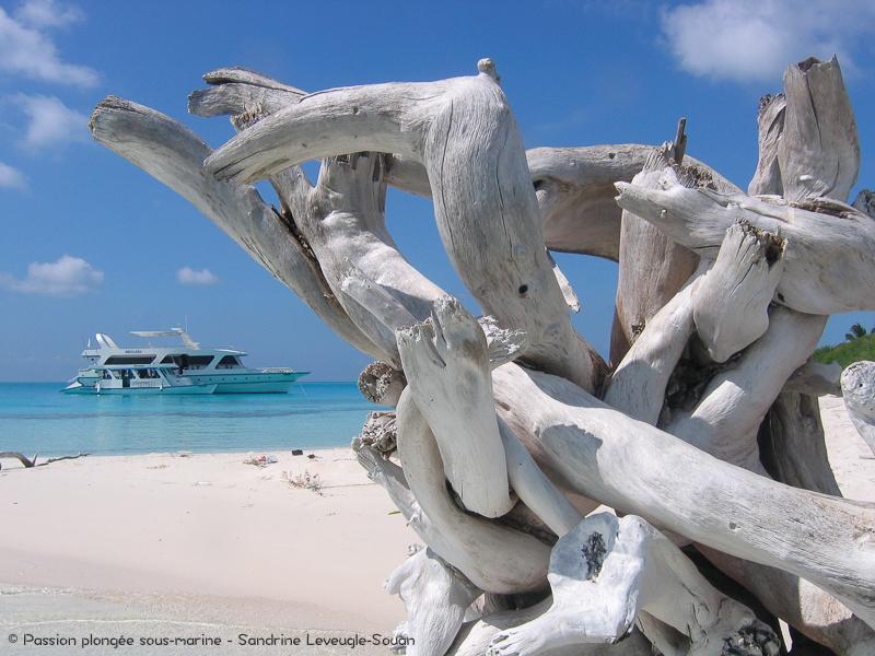 Bateau de croisière plongée aux Maldives