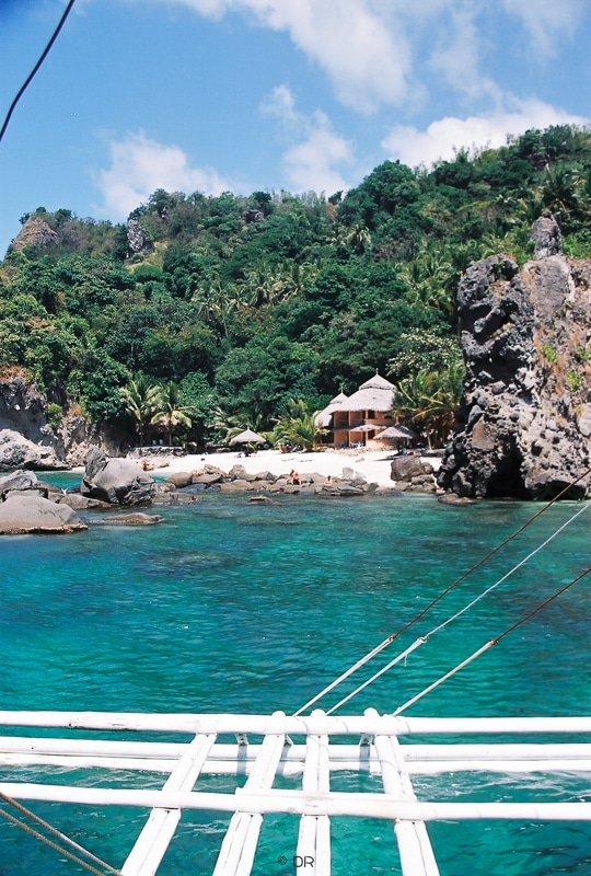 Apo Island Visayas Philippines