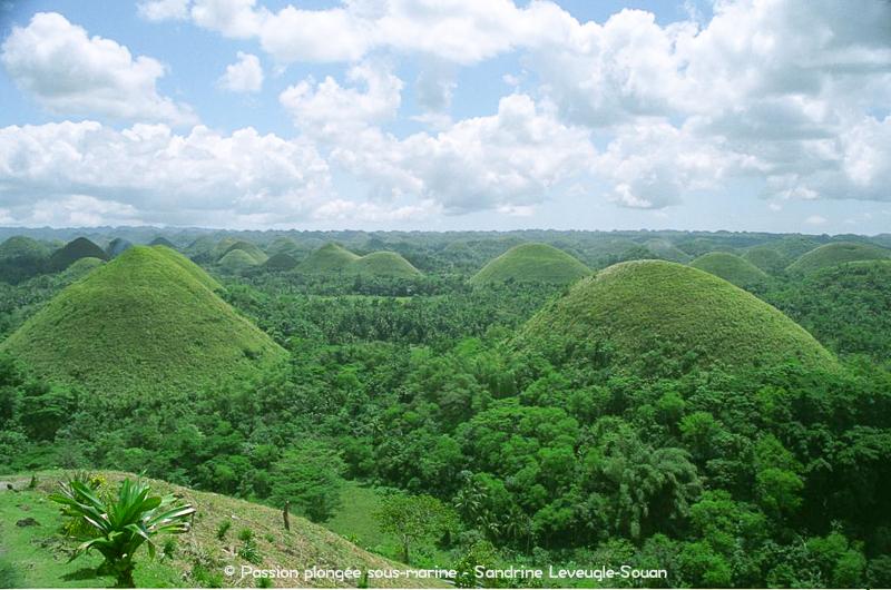 Chocolate Hills Visayas Philippines