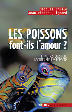 poissons-amour.jpg
