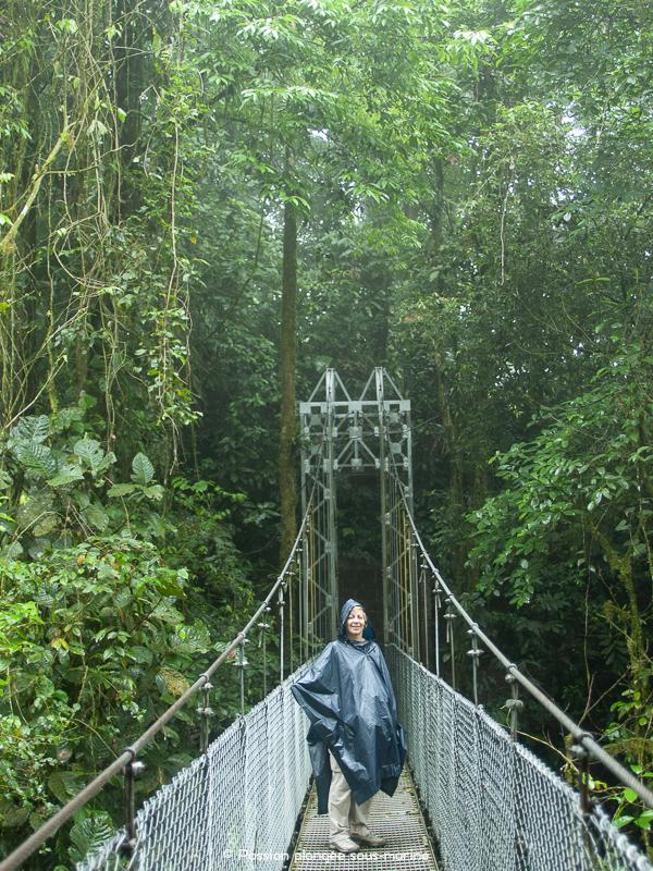 Ponts suspendus Arenal