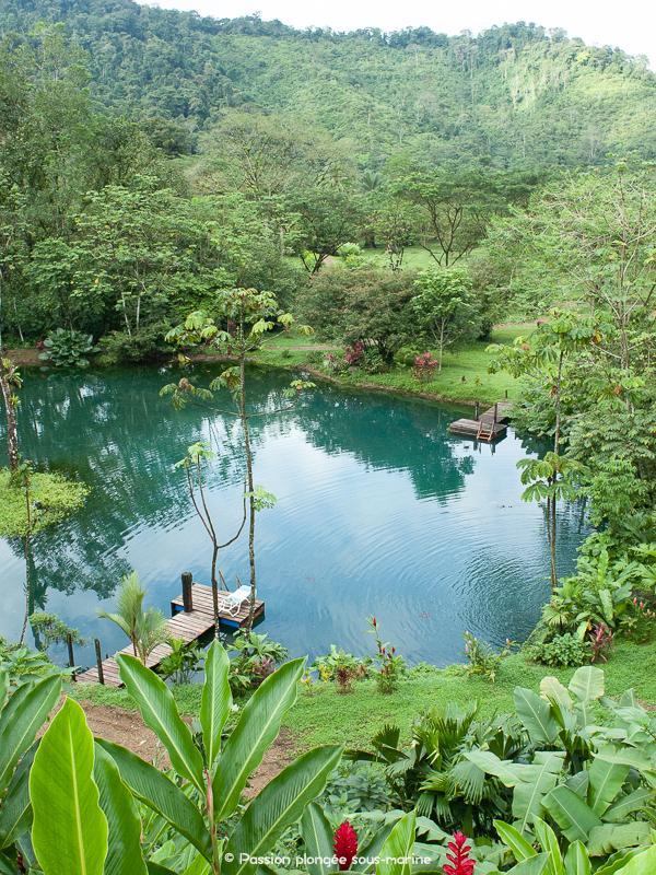 jardin Rafiki Safari Lodge