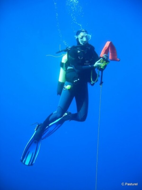 plongée parachute de palier