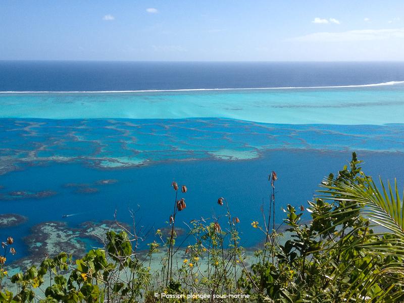 Dégradé de bleus lagon Maupiti