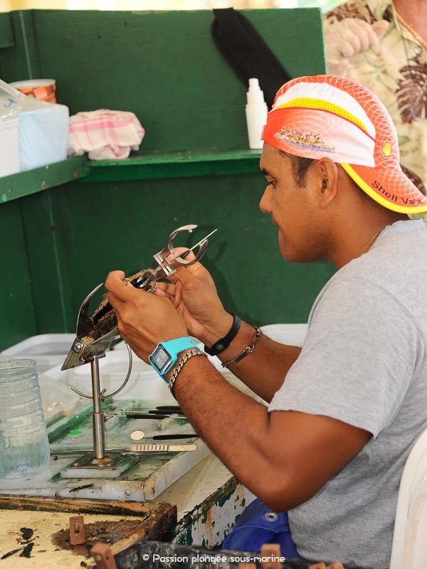 Ferme perlière Rangiroa Tahiti