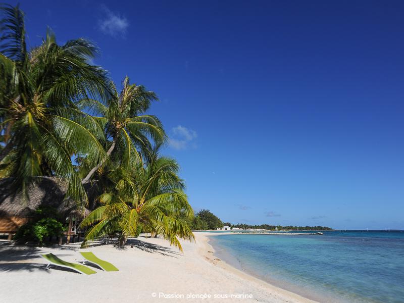plage Tikehau Polynésie