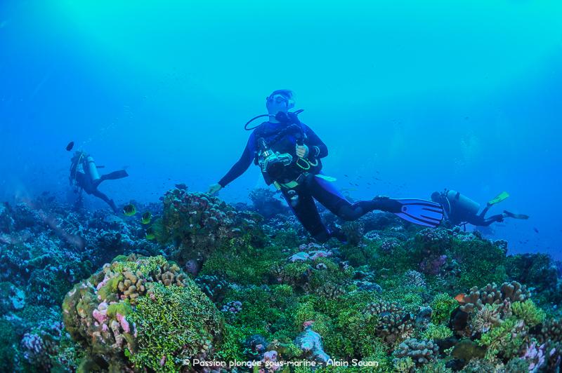 Plongeurs passe Tiputa Rangiroa
