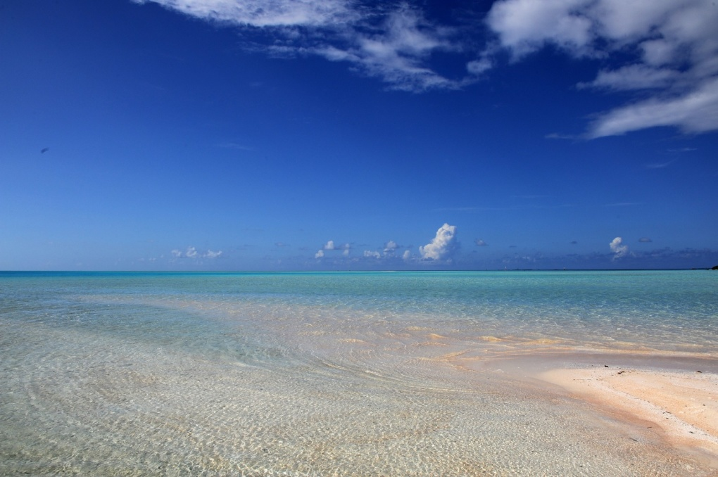 Plongées en Polynésie - octobre 2012