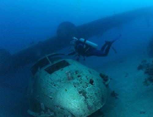 Plongées dans le lagon de Tahiti : très bonne surprise !