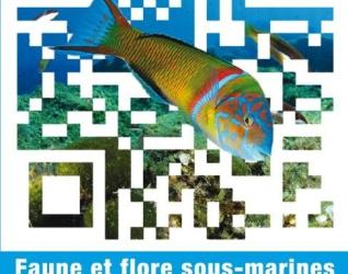 Un guide interactif surprenant consacré à la Méditerranée