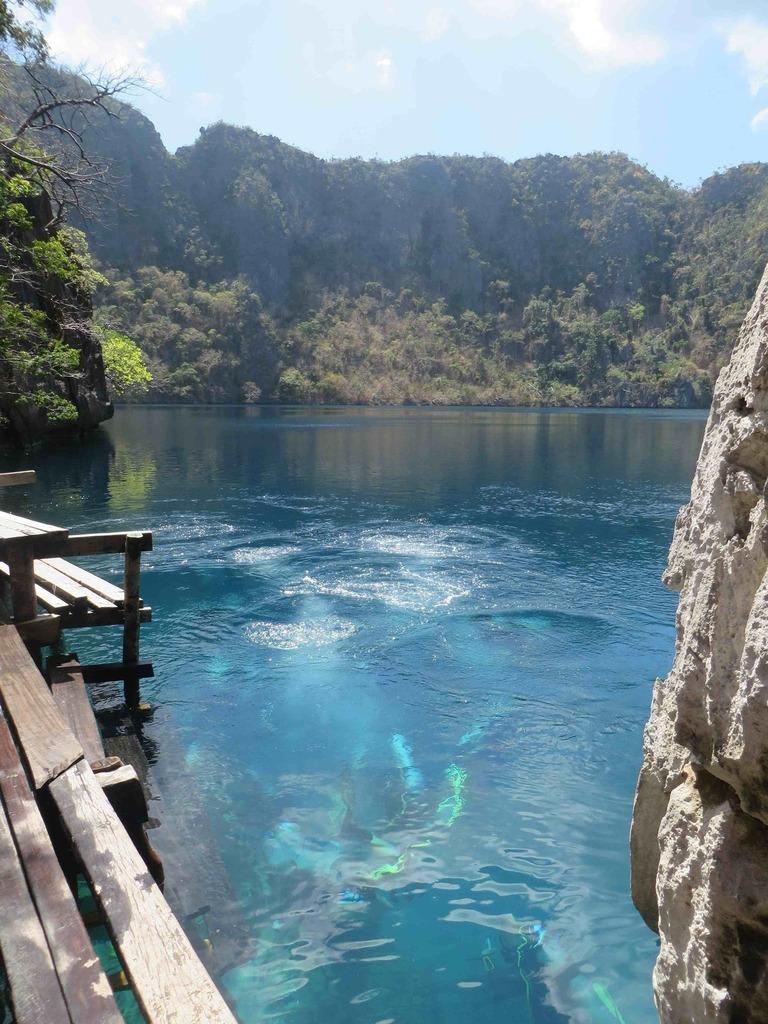 Plongée dans le Barracuda Lake sur l'île de Coron. Photos sous-marines Alain Souan.