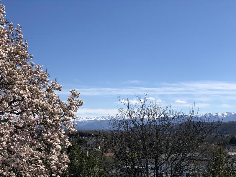 Vue sur les Pyrénées depuis le boulevard des Pyrénées à Pau.